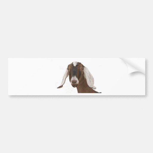 Nubian Bumper Stickers