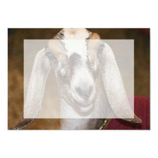 Nubian Dairy Goat Doe White Stripe Caprine Custom Invite