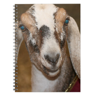 Nubian Dairy Goat Doe White Stripe Caprine Spiral Notebooks