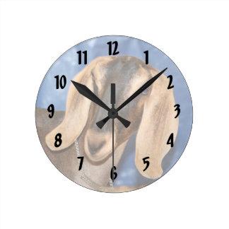 Nubian doe head against blue clock