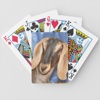 Nubian doe head against blue poker cards
