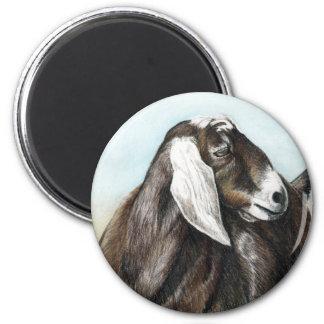Nubian Goat Art Magnet