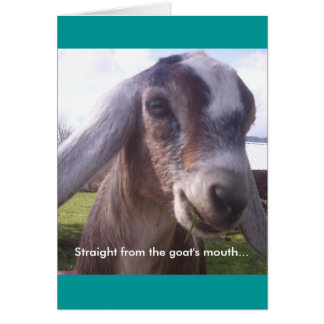 Nubian Goat Greeting Card