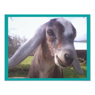 Nubian Goat Personalized Invitations