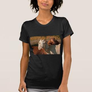 Nubian goats t-shirts