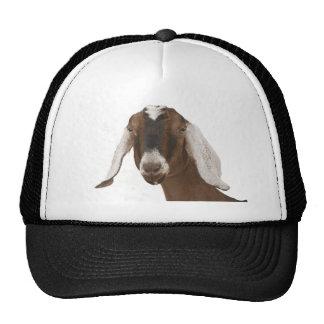 Nubian Mesh Hats