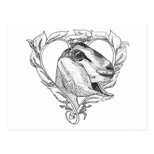 Nubian Head in Heart Post Card