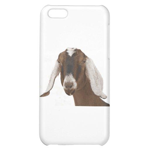 Nubian iPhone 5C Cover