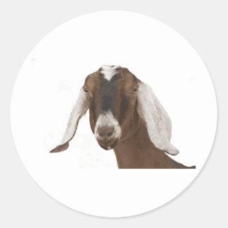 Nubian Round Sticker