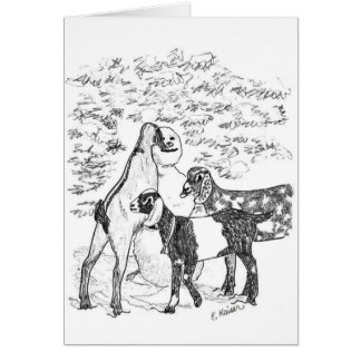 Nubians & Snowman Greeting Cards