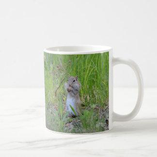 """Nuts About You!"" Coffee Mug"