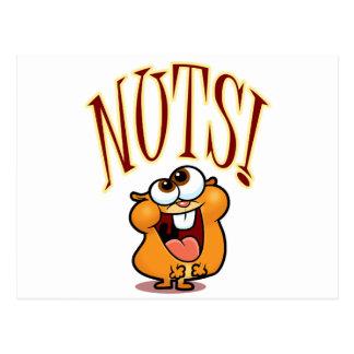 NUTS! POSTCARD