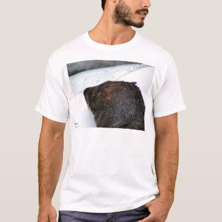 NZ Fur Seal T-Shirt