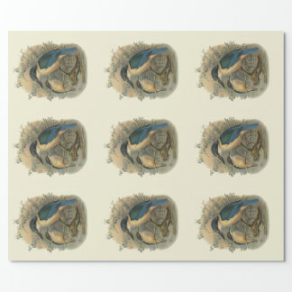 NZ Kingfishers Wrapping Paper