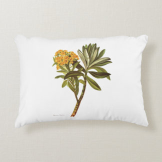 NZ Native Flowers - Senecio huntii Decorative Cushion