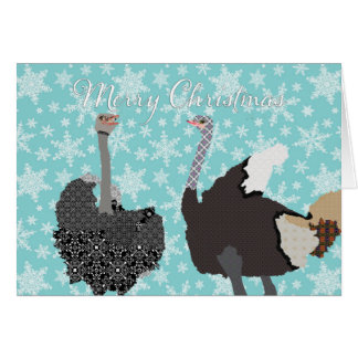 O Holy Ostrich Christmas Greeting Card