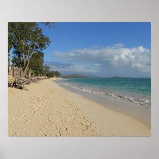 Oahu Beach Morning Poster