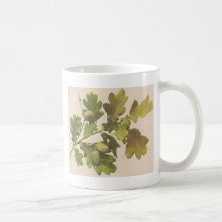 Oak 1907 coffee mug