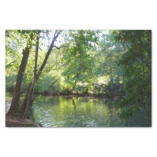 Oak Creek I in Sedona Arizona Nature Photography Tissue Paper