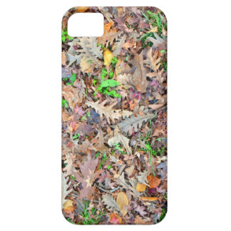 Oak Leaves iPhone 5 Cases