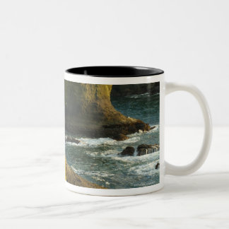 Ocean and rocky shore of remote area Two-Tone coffee mug