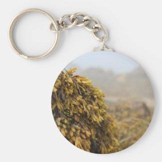 Ocean Seaweed Basic Round Button Key Ring