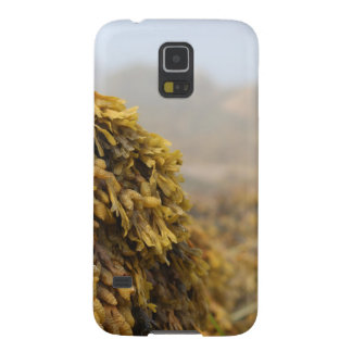 Ocean Seaweed Case For Galaxy S5