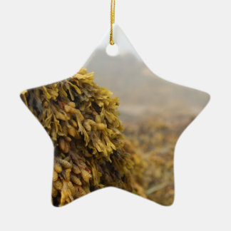 Ocean Seaweed Christmas Tree Ornaments