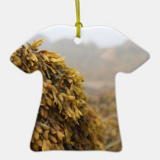Ocean Seaweed Ornament
