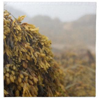 Ocean Seaweed Cloth Napkins