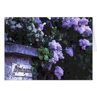 Odalgatan Lilacs Greeting Card