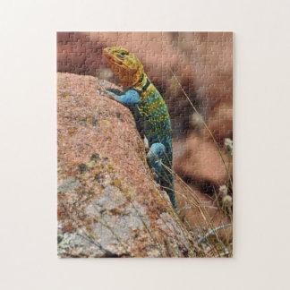 Oklahoma Lizard Jigsaw Puzzle
