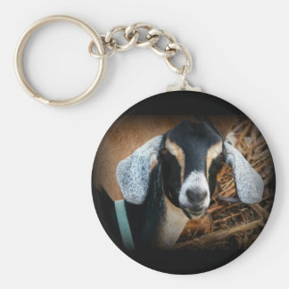 Old Goat Nubian Portrait Photo Keychains