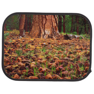 Old-growth Ponderosa tree with pine cones Car Mat