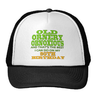 Old Ornery Obnoxious 95th Birthday Gifts Cap