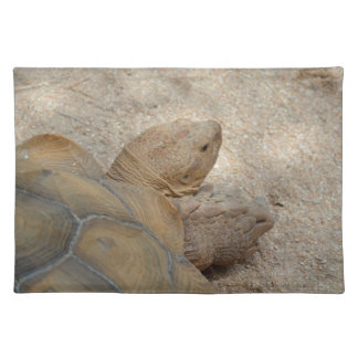 old tortoise reptile back view turtle animal placemat