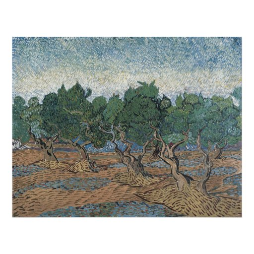 Olive Grove by Vincent Van Gogh Photograph
