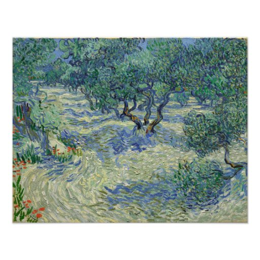 Olive Orchard by Vincent Van Gogh Photographic Print
