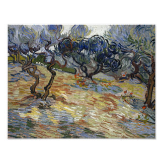 Olive Trees by Vincent Van Gogh Photo