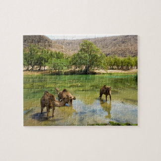 Oman, Wadi darbat, dromedaries pasturing in the Jigsaw Puzzle