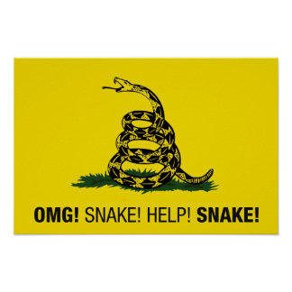 OMG! Snake! Help! Snake! Poster