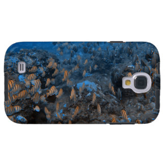On the Reef Galaxy S4 Case