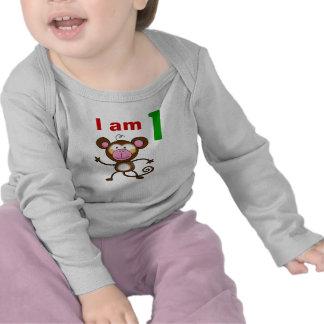 One year old birthday gift (cheeky monkey) tee shirt