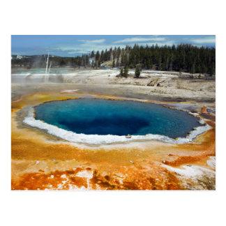 Opal Pool Postcard