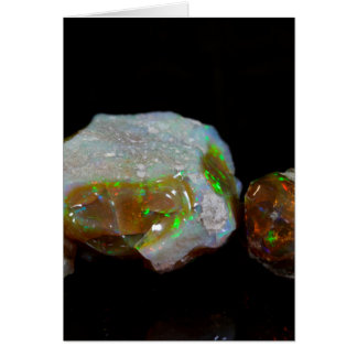 Opals Card