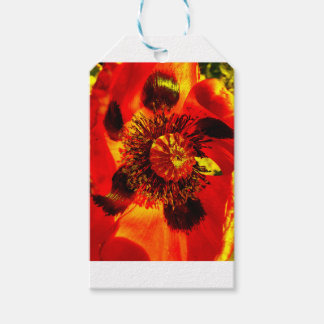 open poppy two gift tags