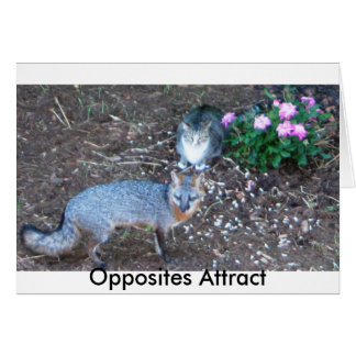 Opposites Attract Note Card