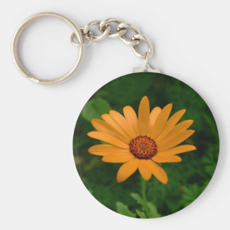 Orange African Daisy Basic Round Button Key Ring