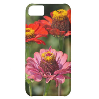 Orange and pink zinnia floral iphone 5 case