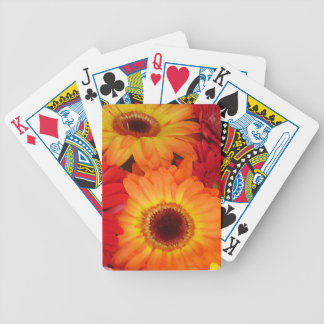 Orange and Red Daisies Poker Deck